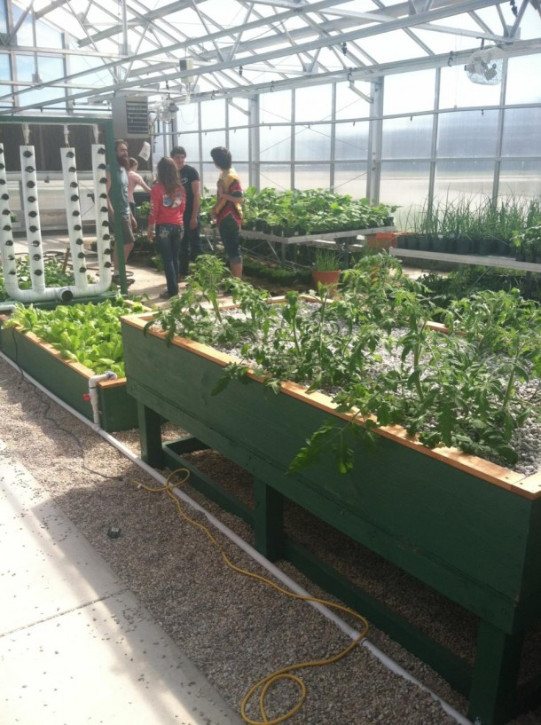 Aquaponics In The Classroom And On The Farm An Update